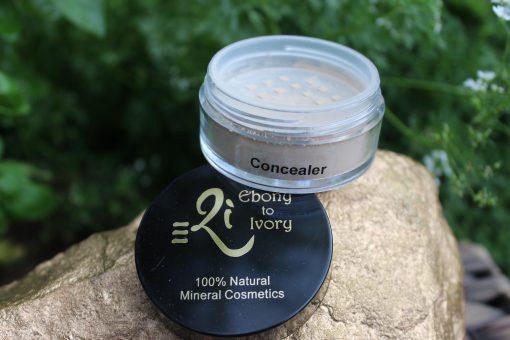 NAS Cosmetics - e2i Concealer